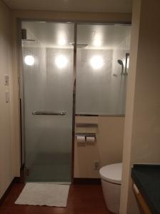 shower door